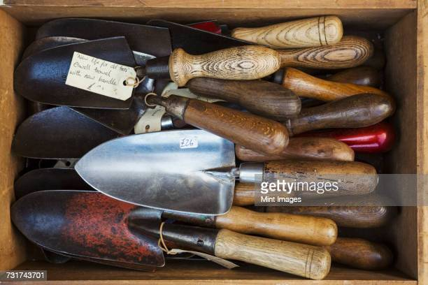 overhead view of a collection of handheld garden forks, with metal tines and smooth wooden handles. - gardening equipment stock pictures, royalty-free photos & images