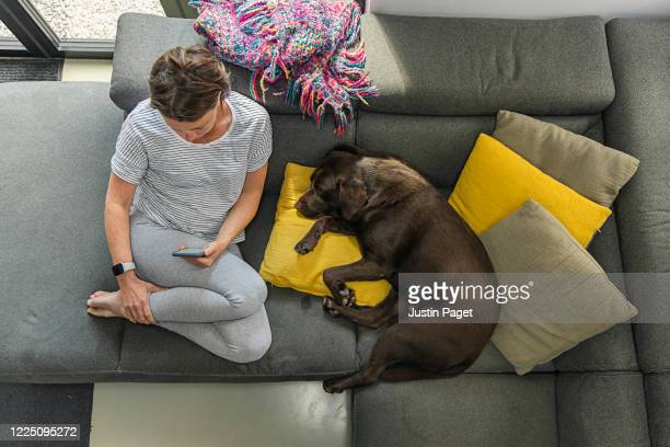 overhead view of a woman on her phone. her pet dog sleeps beside her - boredom stock pictures, royalty-free photos & images