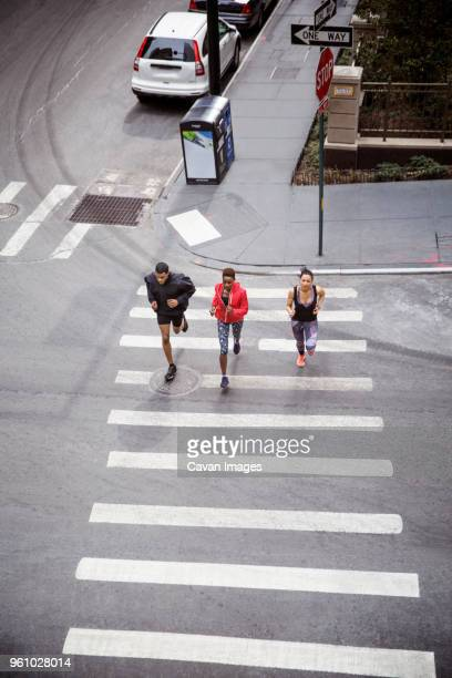 overhead view of athletes running on zebra crossing on city street - animated zebra stock pictures, royalty-free photos & images