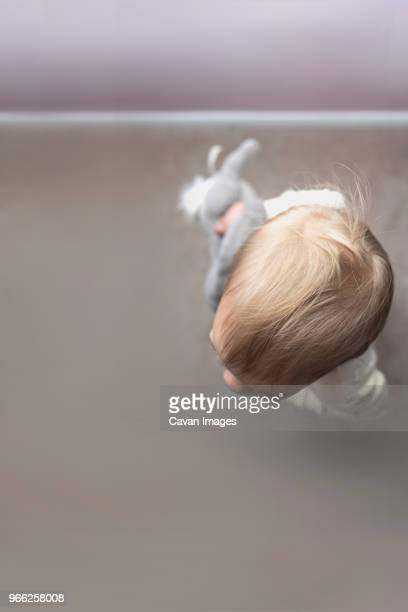 overhead view of baby girl holding stuffed toy at home - babyhood stock pictures, royalty-free photos & images