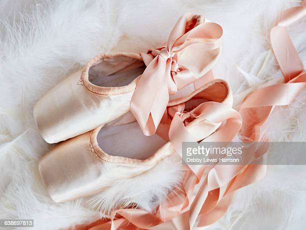 Overhead view of ballet slippers