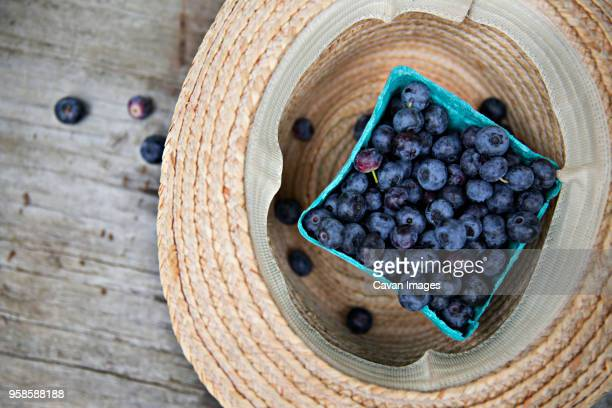 overhead view of blueberry carton in sun hat - carton stock pictures, royalty-free photos & images