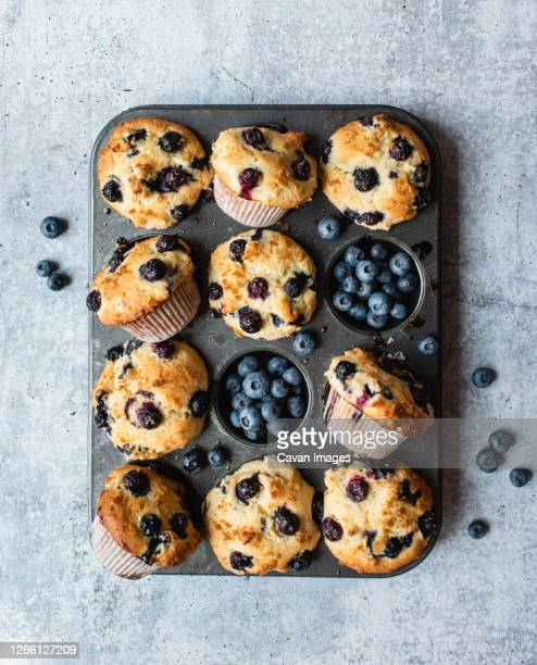 overhead view of blueberry muffins in baking tin on concrete counter. - muffin stock pictures, royalty-free photos & images