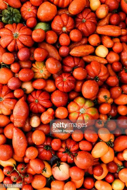 overhead view of fresh red tomatoes on table - cultivated stock pictures, royalty-free photos & images