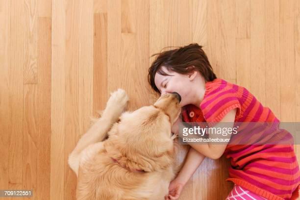 Overhead view of golden retriever dog licking girl's face.