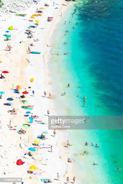 overhead view of people at beach. italy - marche italia foto e immagini stock