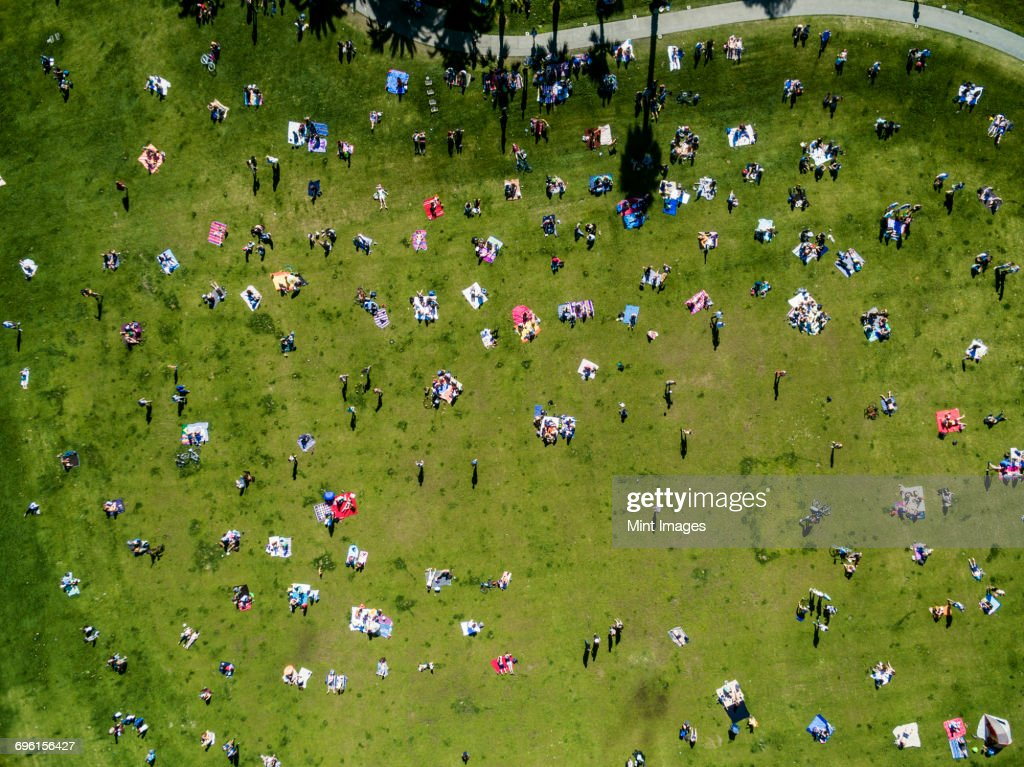 Overhead view of people in a city park on a summer day, sitting, standing, on picnic rugs. : Stock-Foto