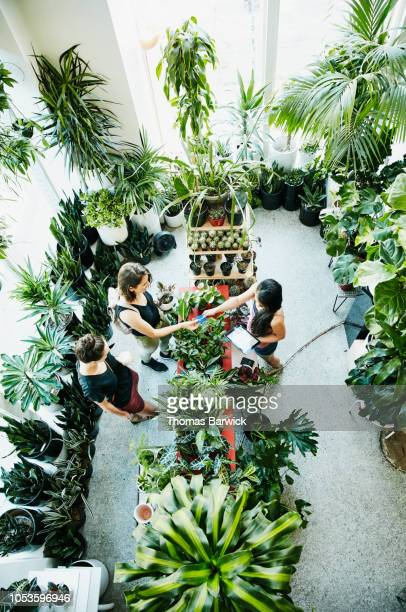 Overhead view of plant shop owner processing customers credit card payment on digital tablet