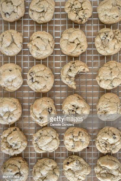 Overhead view of rows of cookies on a wire cooling rack