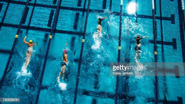 overhead view of swimmers in pool - contest stock pictures, royalty-free photos & images