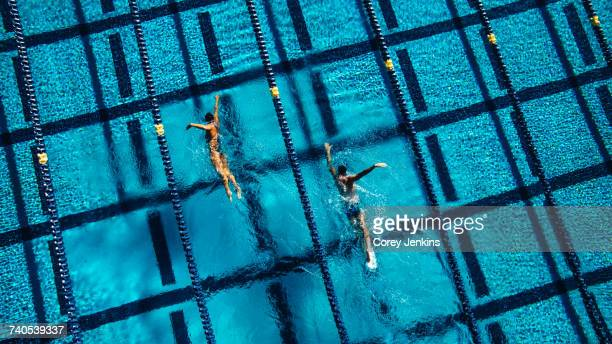 overhead view of swimmers in pool - length stock pictures, royalty-free photos & images