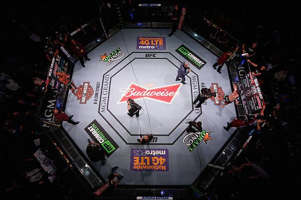 UFC 183: Silva V Diaz Wall Art