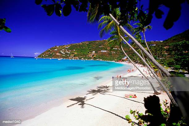 overhead view of tourists on cane garden bay in tortola, british virgin islands, caribbean - cane garden bay stock pictures, royalty-free photos & images