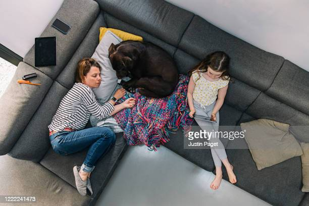 overhead view of woman, her daughter and pet dog on the sofa - illness stock pictures, royalty-free photos & images