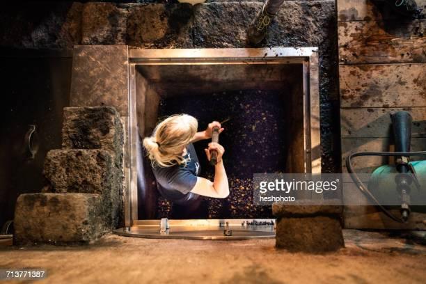 overhead view of woman pressing grapes in vineyard vat - heshphoto stock-fotos und bilder
