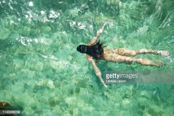 overhead view of young woman swimming in sea, islamorada, florida, usa - skinny dipping stock photos and pictures