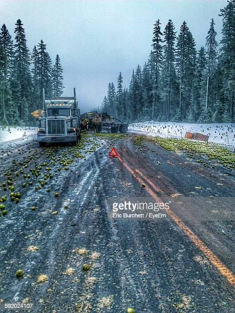 overloaded truck accident on road - fruit laden trees stock pictures, royalty-free photos & images