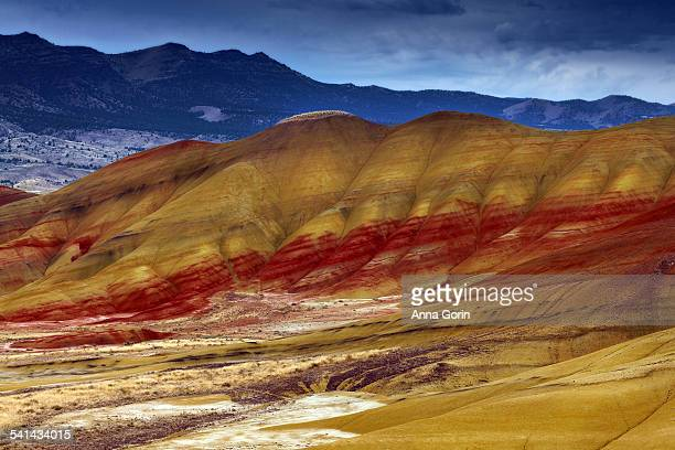 overlook of painted hills in autumn, overcast - fossil site stock pictures, royalty-free photos & images