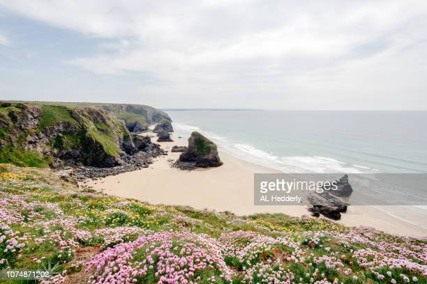 overlooking bedruthan steps beach - cornwall england stock pictures, royalty-free photos & images