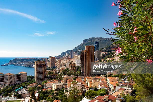 Overlooking Monte Carlo harbor