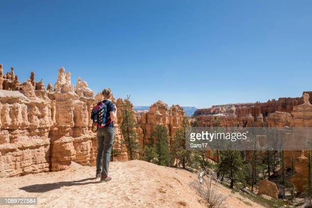 overlooking rock hoodoos at bryce canyon, utah. - unesco world heritage site stock pictures, royalty-free photos & images