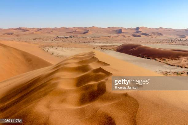 overlooking sossusvlei from top of the sand dune, namib desert, namib-naukluft national park, namibia - セスリエム ストックフォトと画像