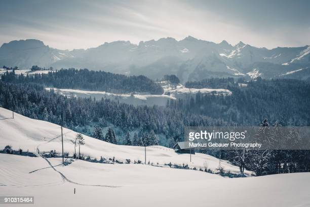 Overlooking Valley and Snow Capped Mountains Landscape