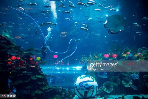 Oversized football in Aquarium at Dubai Mall