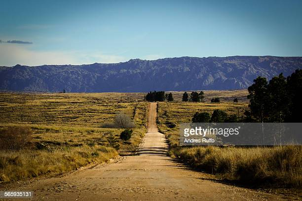 overview mountain road surrounded by vegetation - andres ruffo stock pictures, royalty-free photos & images