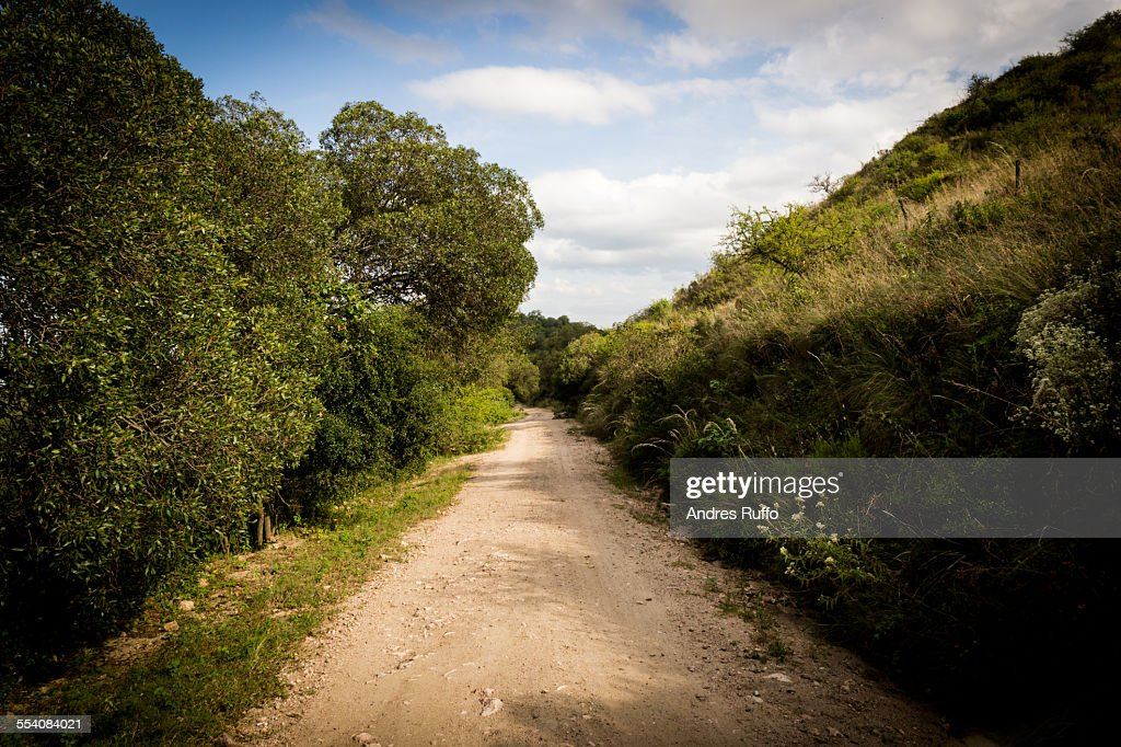 Overview mountain road with vegetation and cloudy : Stock Photo
