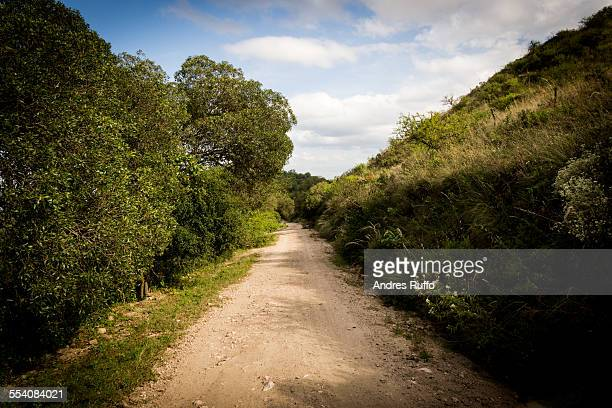 overview mountain road with vegetation and cloudy - andres ruffo stock pictures, royalty-free photos & images