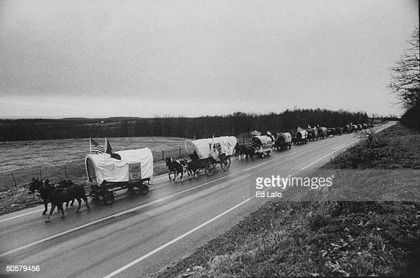 Overview of horsedrawn covered wagon train trekking up highway reenacting 1000mile journey that Cherokees traveled 150 years ago came to be known as...