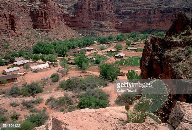 overview of supai village in grand canyon - supai stock photos and pictures