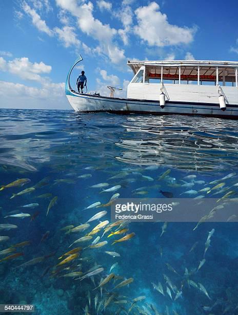 Overwater and Underwater view of Maldivian Lagoon