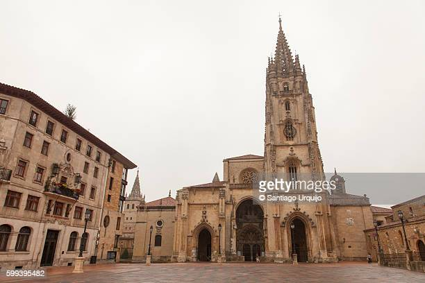 oviedo cathedral - oviedo stock pictures, royalty-free photos & images