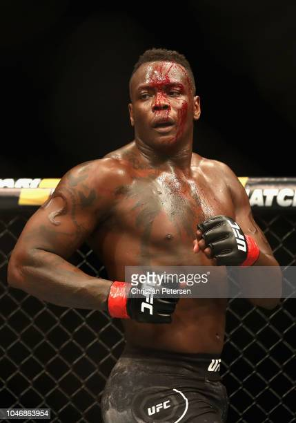 Ovince Saint Preux bleeds while fighting Dominick Reyes in their light heavyweight bout during the UFC 229 event inside TMobile Arena on October 6...