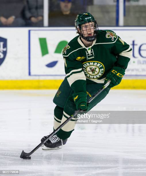 Owen Grant of the Vermont Catamounts skates against the Massachusetts Lowell River Hawks during NCAA men's hockey at the Tsongas Center on January 5...