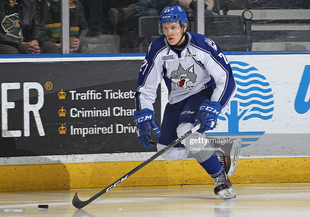 Sudbury Wolves v London Knights : News Photo