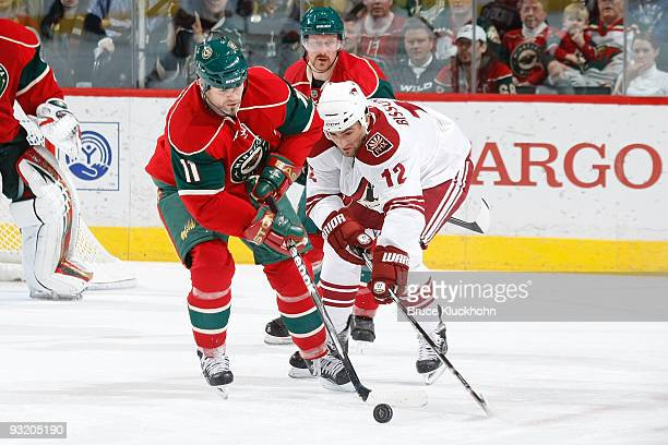 Owen Nolan of the Minnesota Wild and Paul Bissonnette of the Phoenix Coyotes battle for control of the puck during the game at the Xcel Energy Center...
