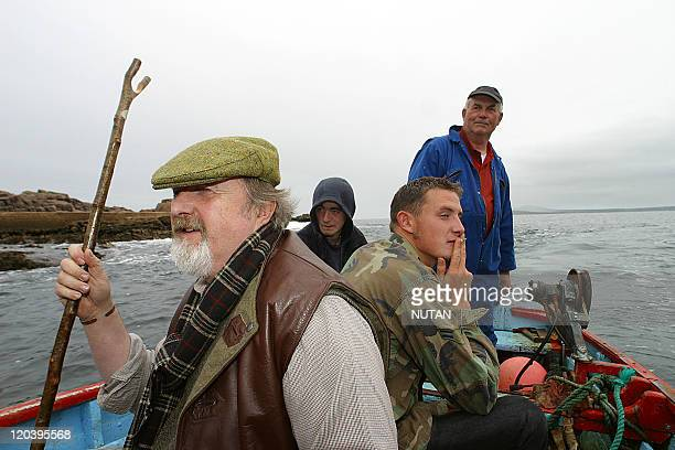 Owey Island Ireland in 2004 Once a year the communal sheep shearing brings all the islanders together