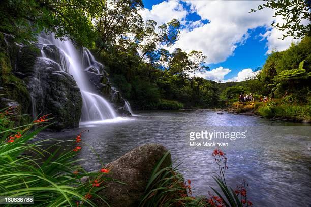 Owharoa waterfall