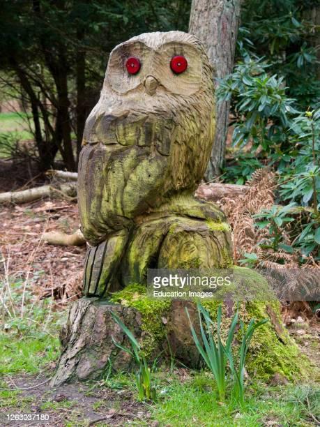 Owl carved out of a tree stump on the Sandringham Estate, Norfolk, UK.