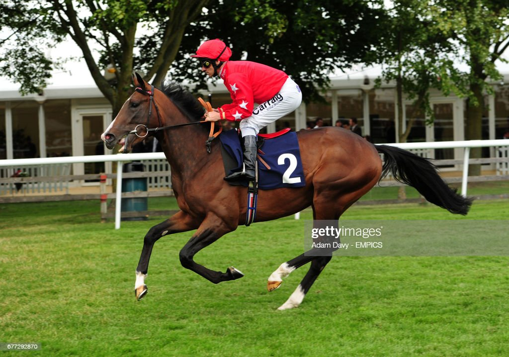 Horse Racing - The Piper Heidsieck July Festival - Abu Dhabi Day - Newmarket Racecourse : News Photo
