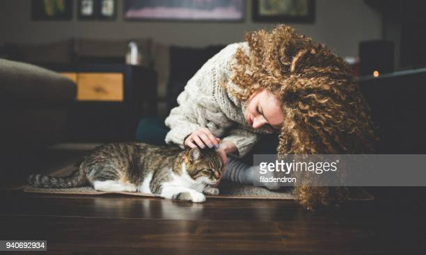 owner playing with cute funny cat at home - domestic cat stock pictures, royalty-free photos & images