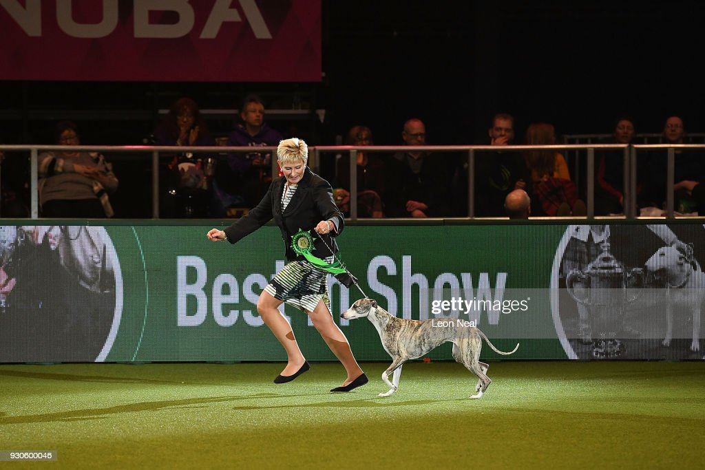 Owner Yvette Short and Tease the Whippet who has won Best In Show, parade in the arena during day four of the Cruft's dog show at the NEC Arena on March 11, 2018 in Birmingham, England.