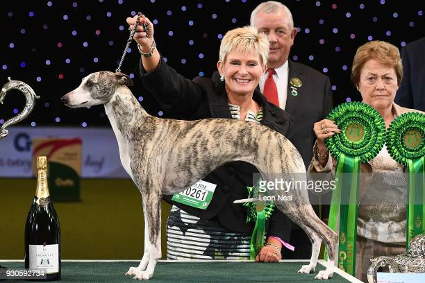 Owner Yvette Short smiles as Tease the Whippet wins Best In Show on day four of the Cruft's dog show at the NEC Arena on March 11, 2018 in...