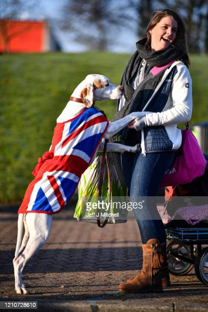 Owners arrive with their dogs for day 2 of the Cruft's dog show at the NEC Arena on March 6, 2020 in Birmingham, England. The annual four-day show...