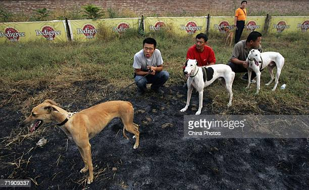 Owners with their greyhounds wait for the start of a greyhound racing at Songzhuang Village of Tongzhou District on September 16 2006 in Beijing...