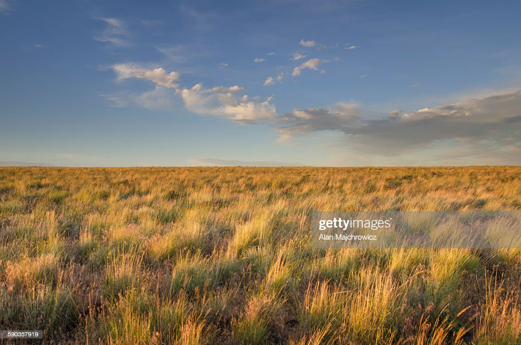 Owyhee Desert prairie : Stock Photo
