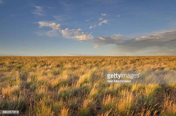 Owyhee Desert prairie